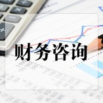 财税咨询师