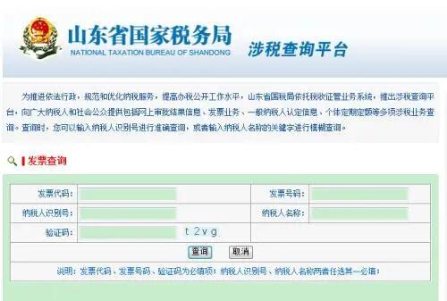 山东网上报税平台